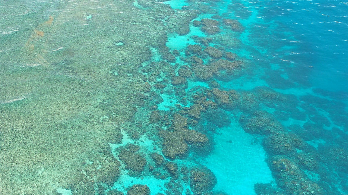 Fishing Holidays in Australia's Great Barrier Reef